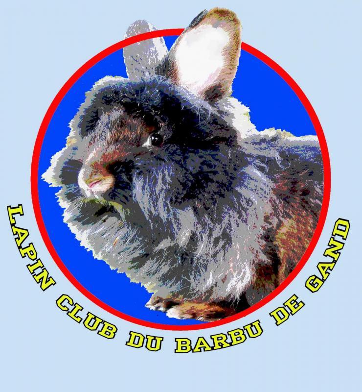 Barbu club logo texte externe fond bleu lettres entourees non fusionne 2