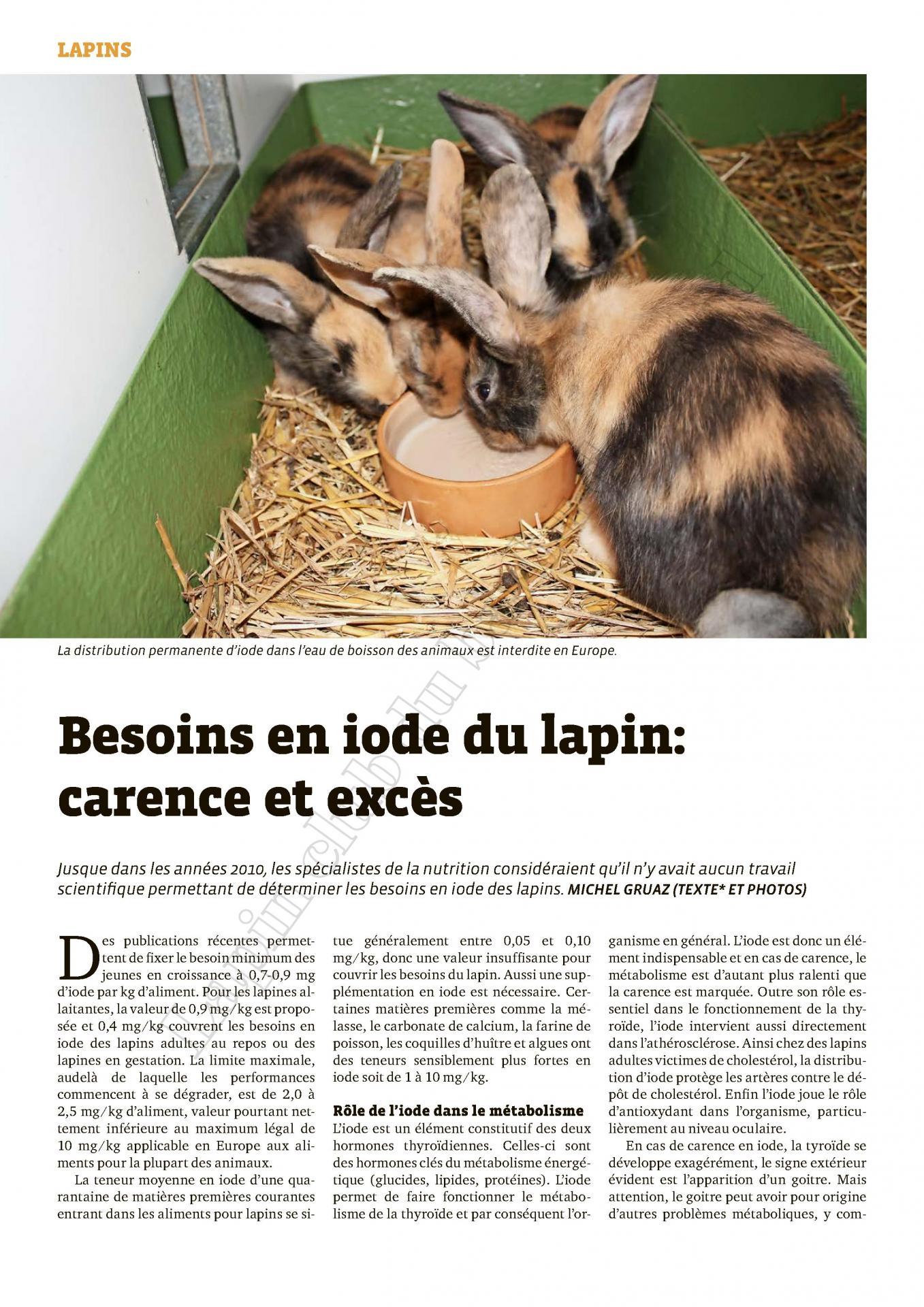 Besoins en iode du lapin carence et exces 1