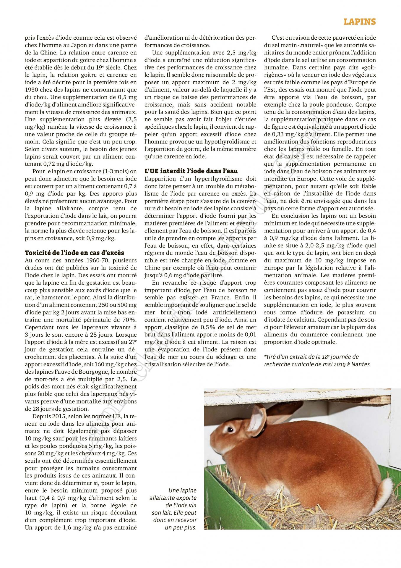 Besoins en iode du lapin carence et exces 2