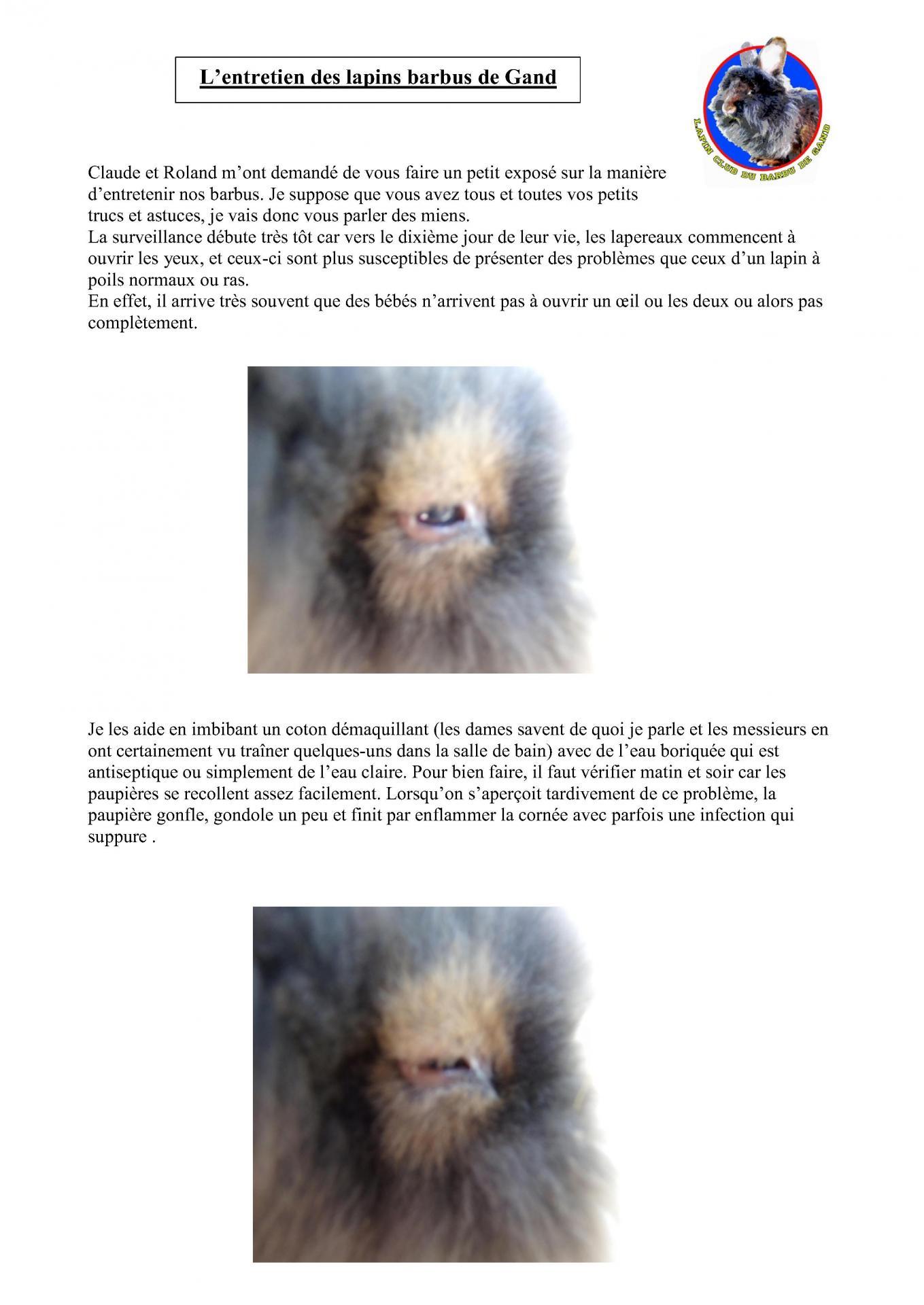 Expose leudon l entretien du barbu 1