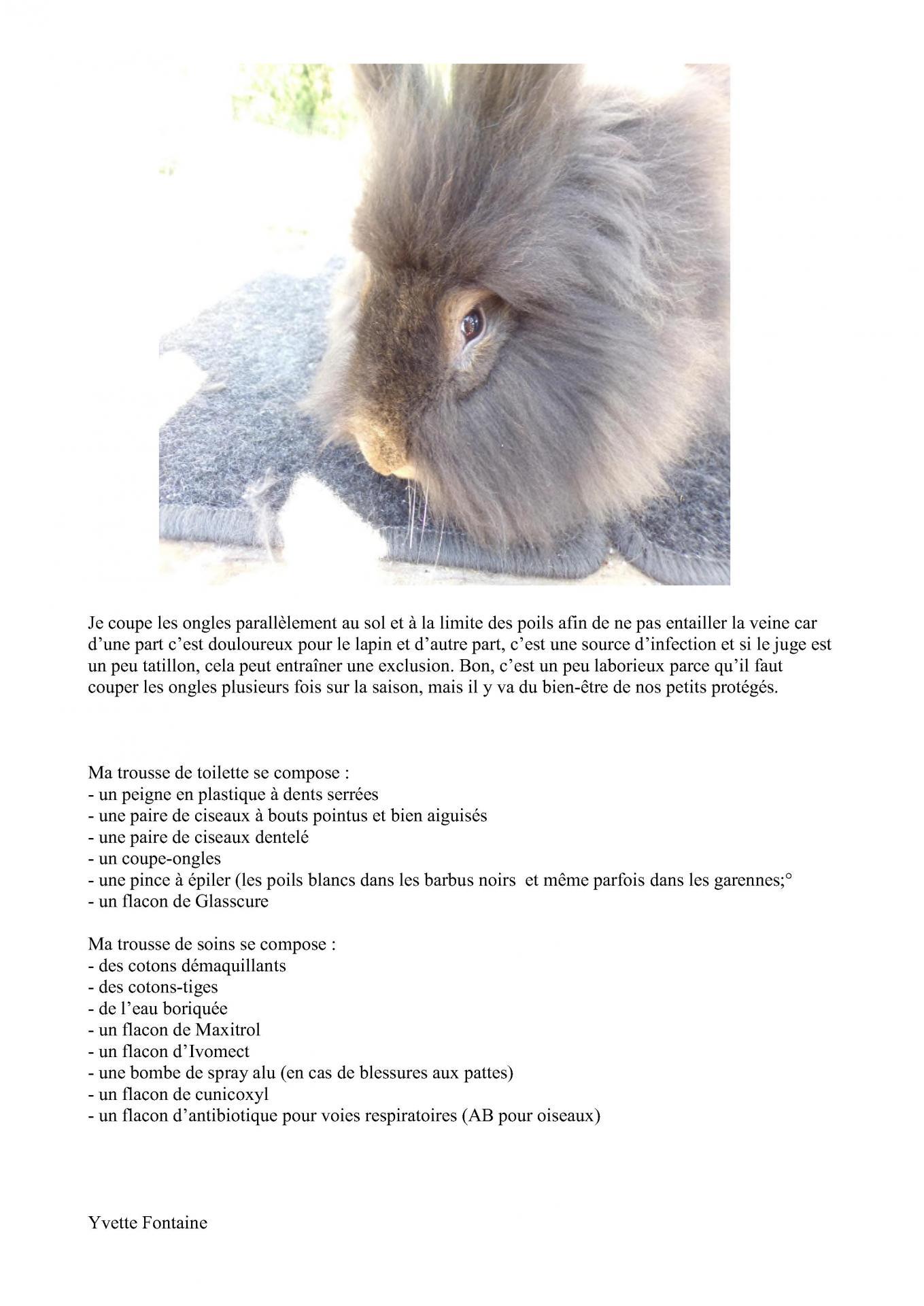 Expose leudon l entretien du barbu 6