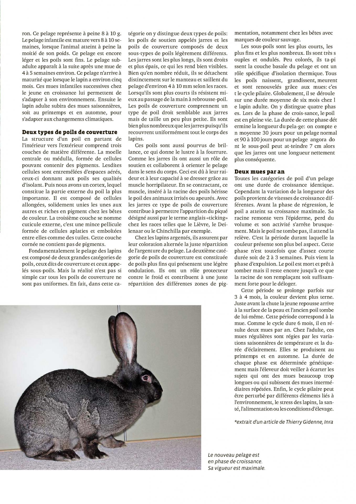 Extraire page 1 2
