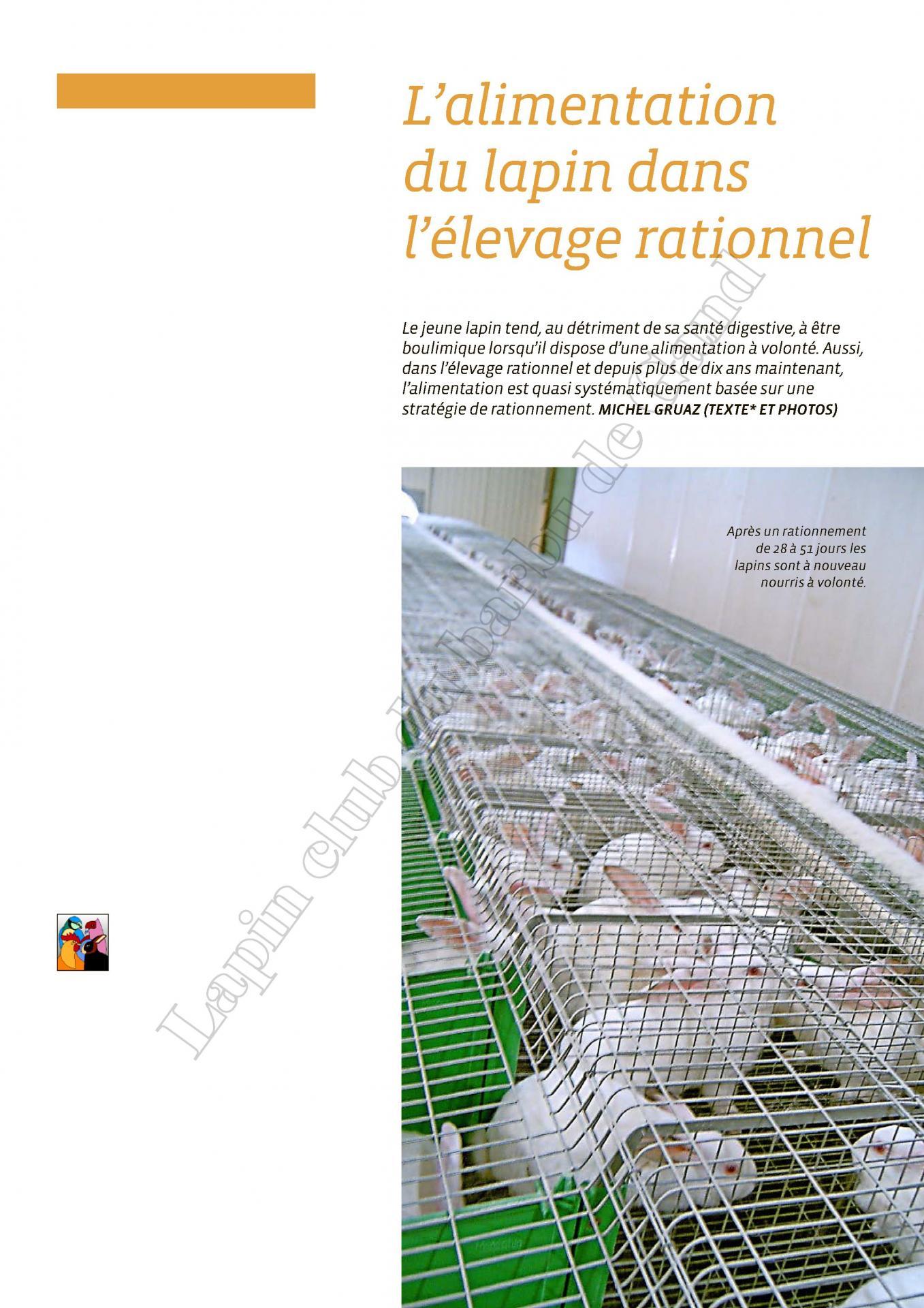 L alimentation du lapin dans l elevage rationnel 1