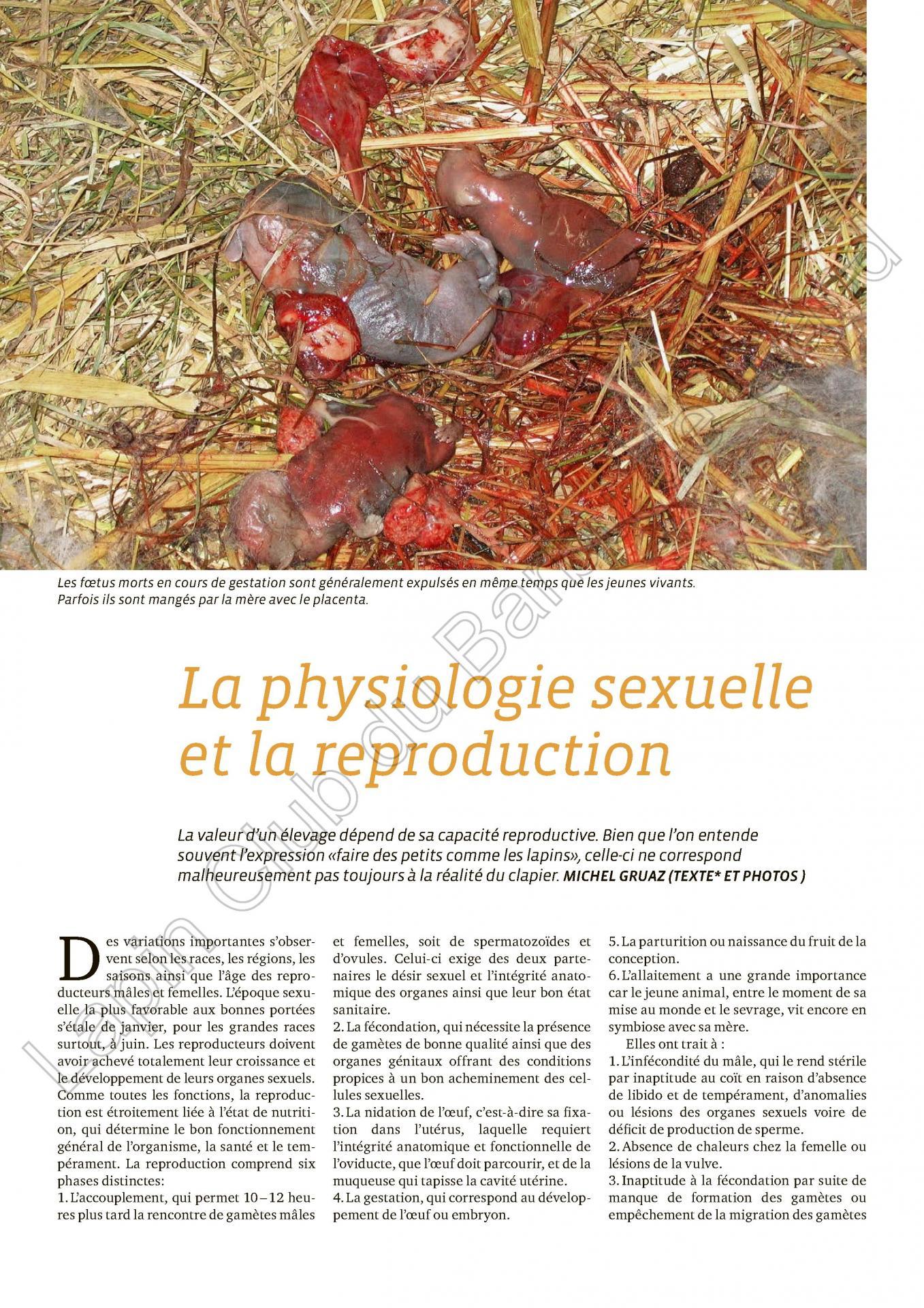 La physiologie sexuelle et la reproduction 1