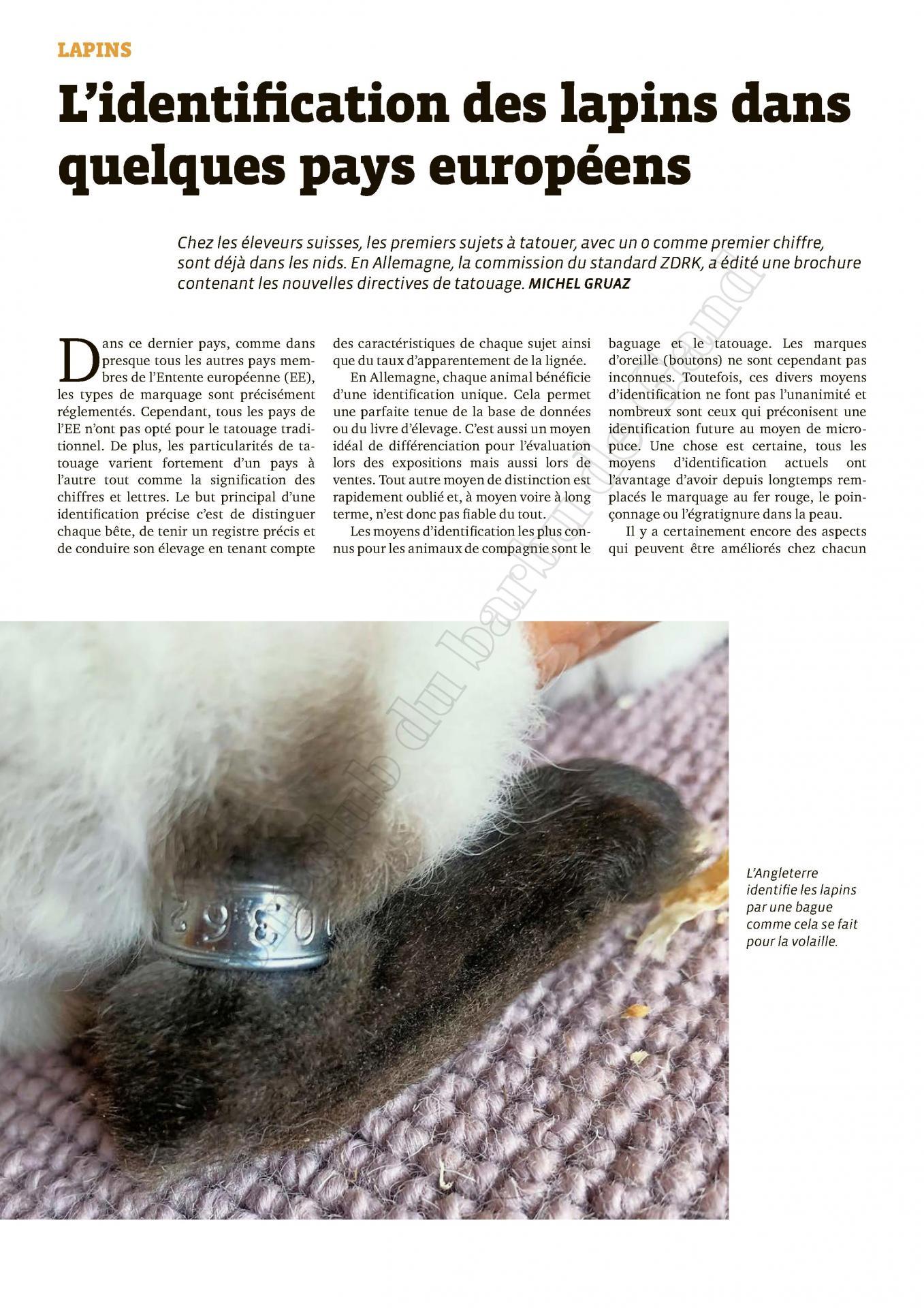 N 15 2020 l identification des lapins dans quelques pays europeens 1