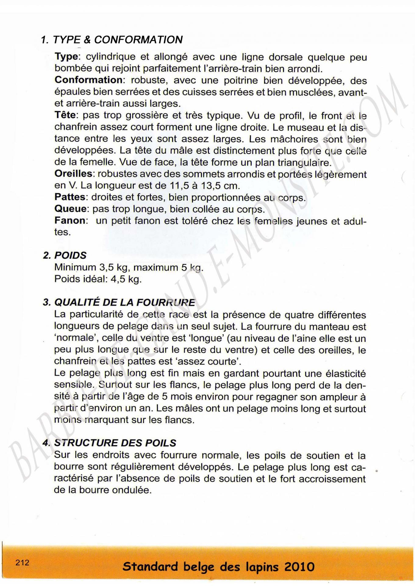 Standard belge 2 filigrane