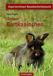 Genter Bartkaninchen Inge Frasch