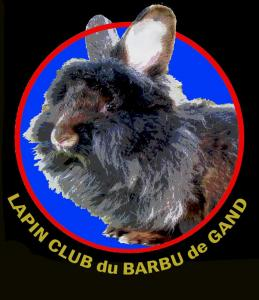 Lapin Club du Barbu de Gand